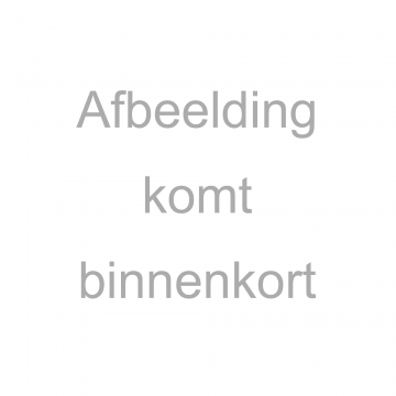 Abelia'Edward Goucher'