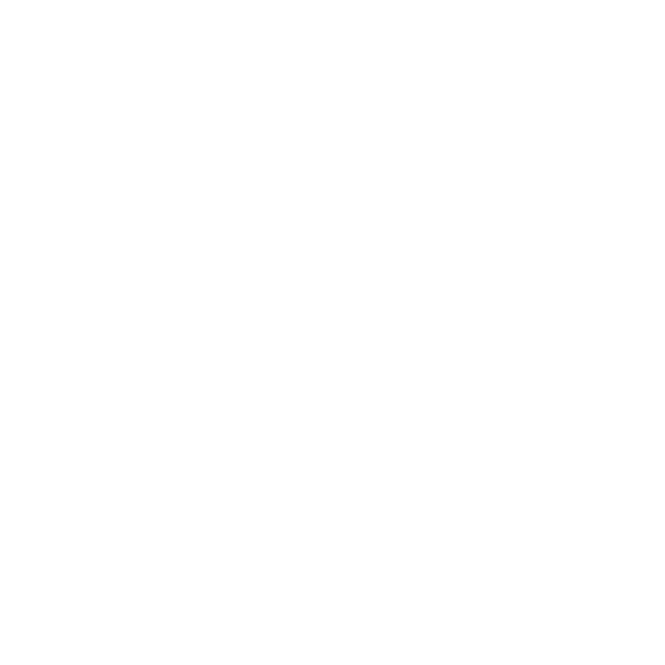Agastache'After Eight'